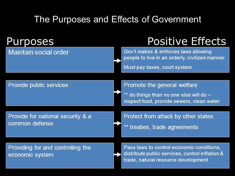 The Purposes and Effects of Government