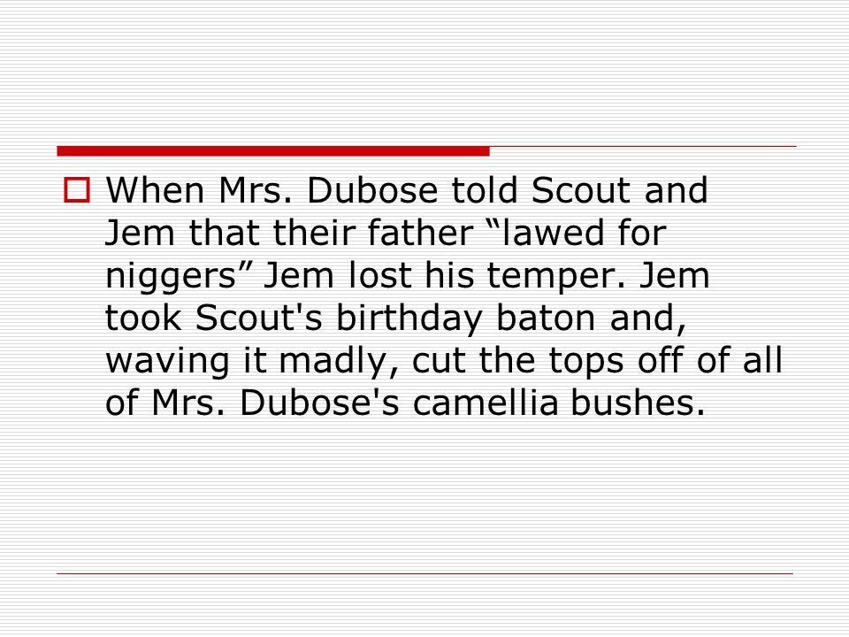 When Mrs. Dubose told Scout and Jem that their father lawed for niggers Jem lost his temper.