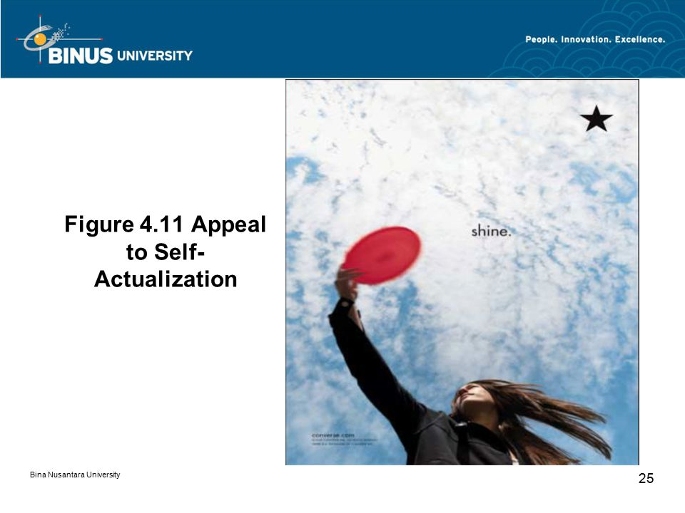 Figure 4.11 Appeal to Self-Actualization