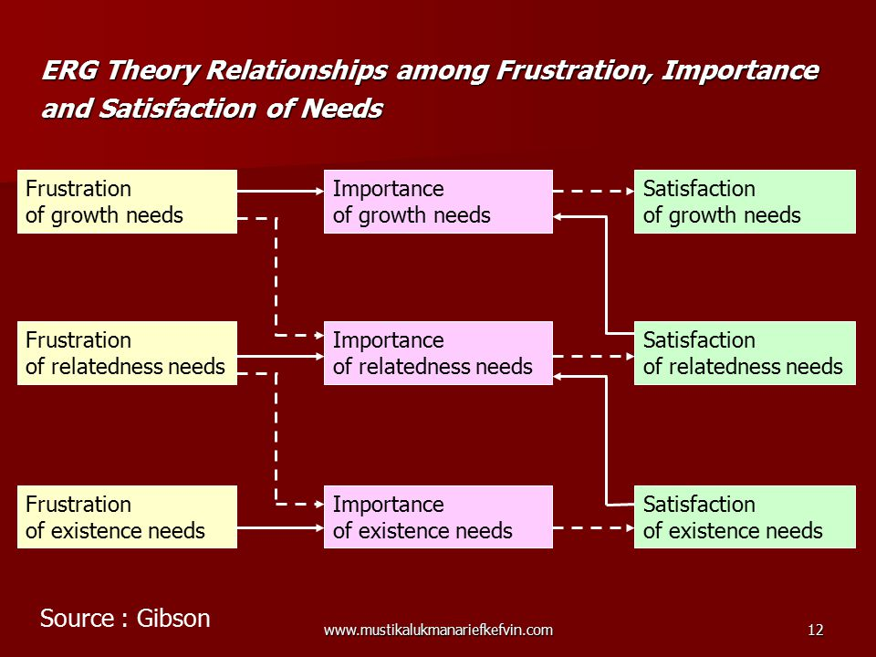 ERG Theory Relationships among Frustration, Importance and Satisfaction of Needs