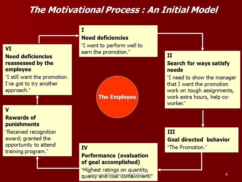 The Motivational Process : An Initial Model