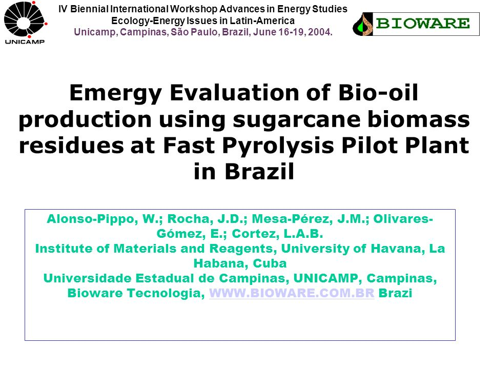 IV Biennial International Workshop Advances in Energy Studies Ecology-Energy Issues in Latin-America Unicamp, Campinas, São Paulo, Brazil, June 16-19, 2004.