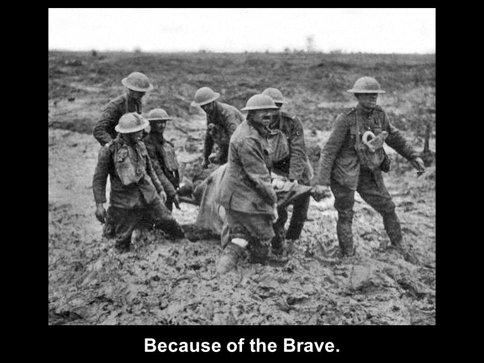 Because of the Brave.