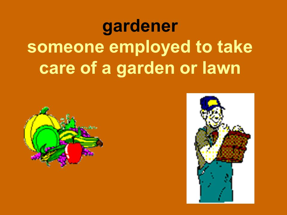 gardener someone employed to take care of a garden or lawn