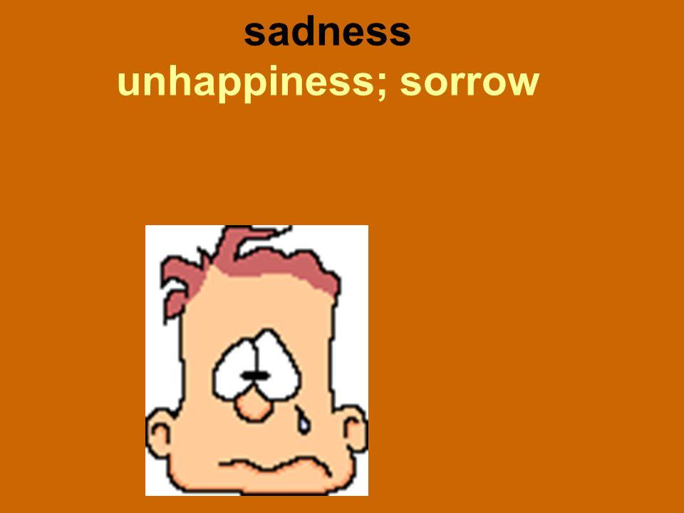 sadness unhappiness; sorrow