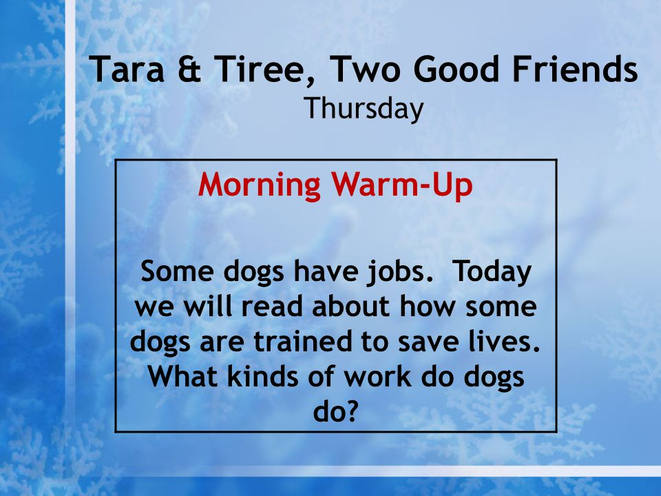 Tara & Tiree, Two Good Friends Thursday
