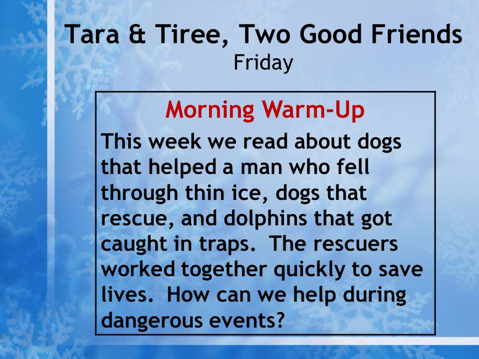 Tara & Tiree, Two Good Friends Friday