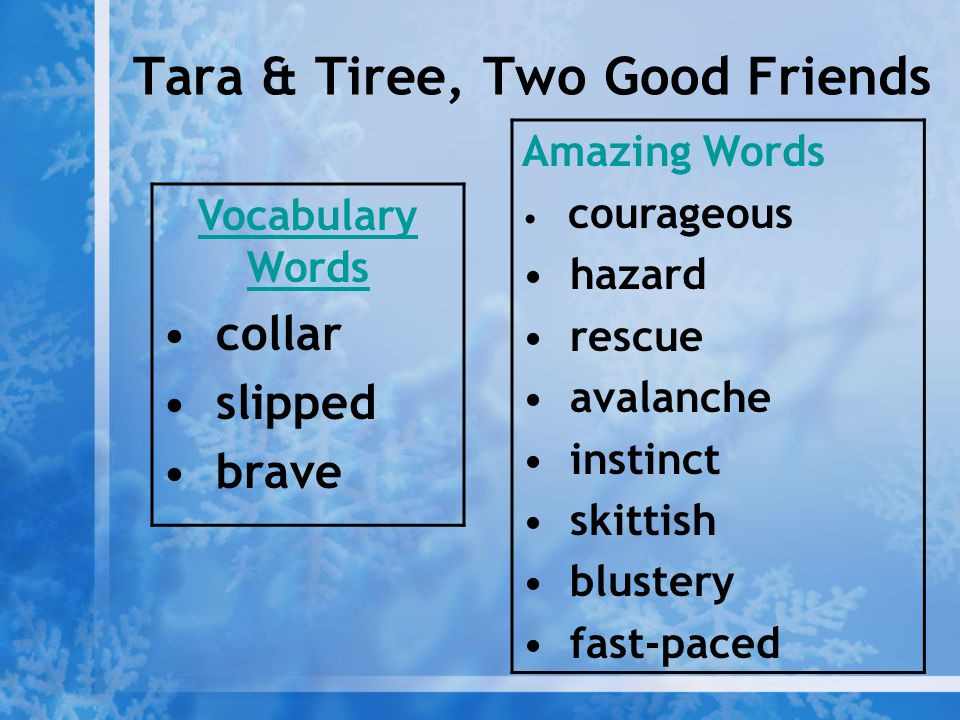 Tara & Tiree, Two Good Friends