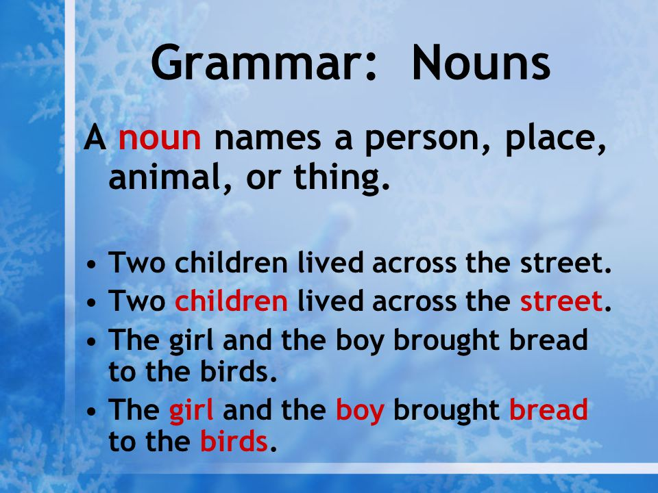 Grammar: Nouns A noun names a person, place, animal, or thing.