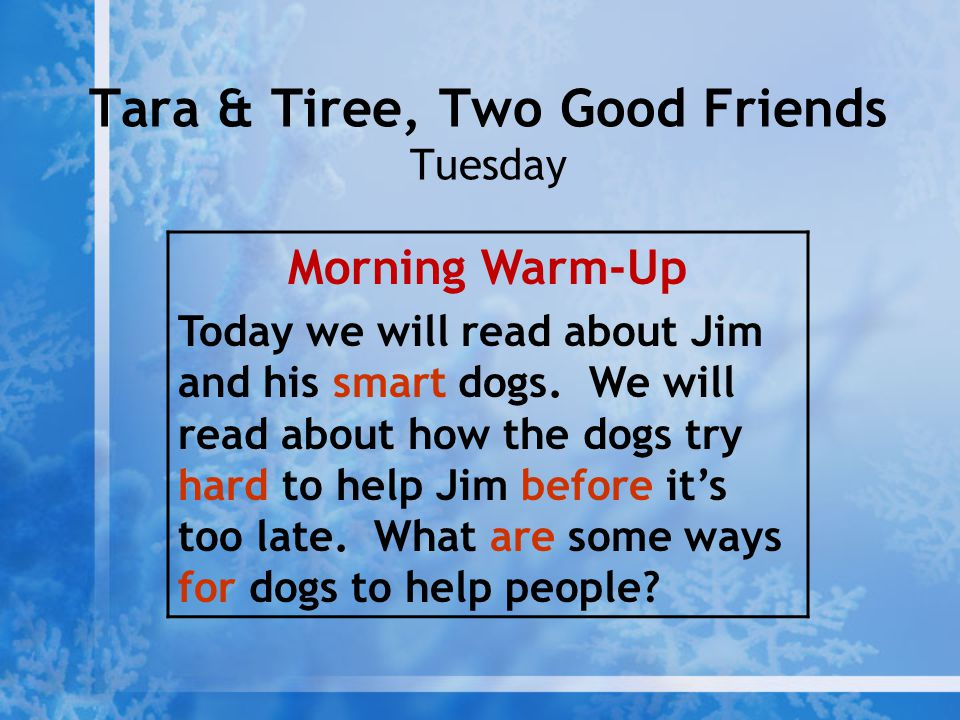 Tara & Tiree, Two Good Friends Tuesday