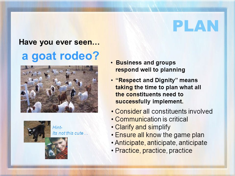 PLAN a goat rodeo Have you ever seen…