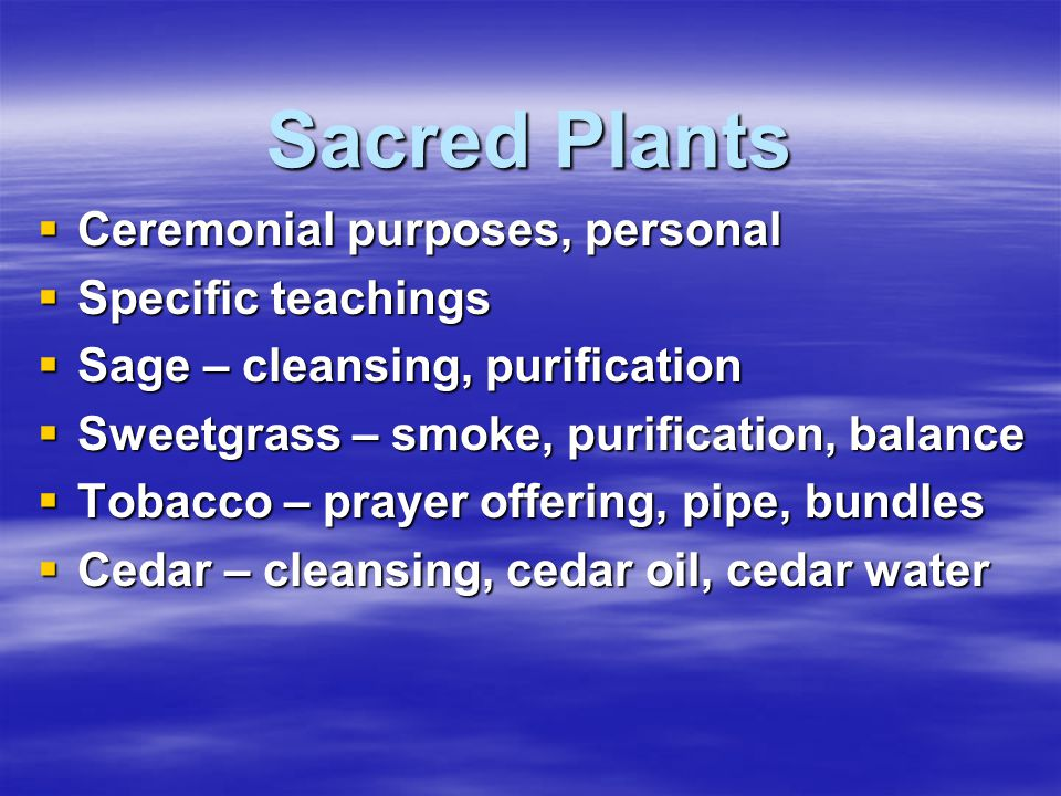 Sacred Plants Ceremonial purposes, personal Specific teachings