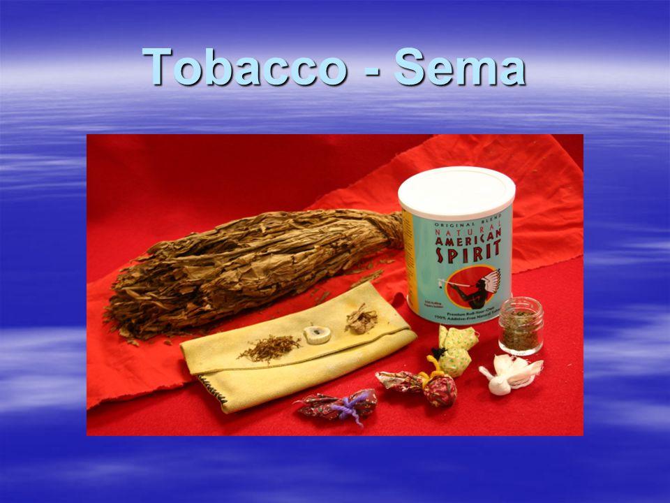 Tobacco - Sema