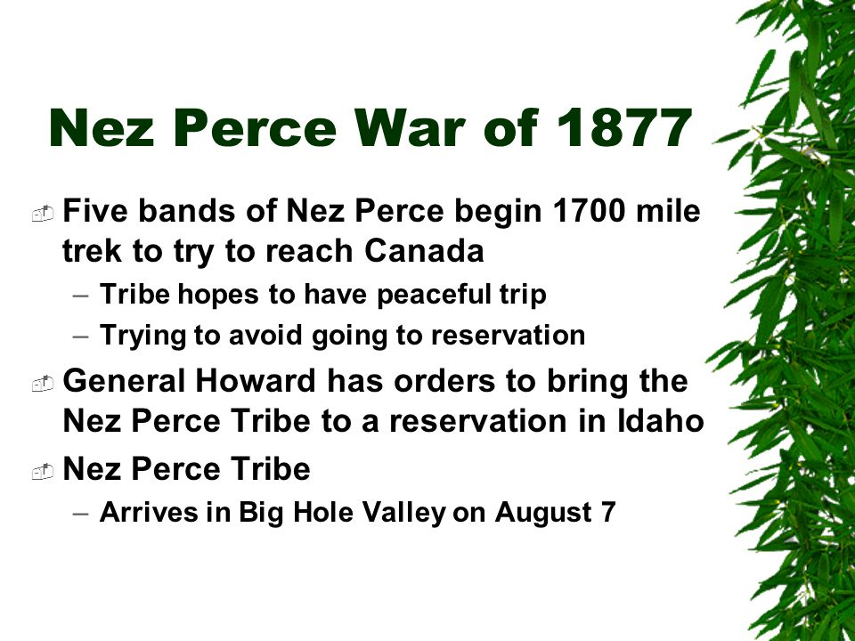 Nez Perce War of 1877 Five bands of Nez Perce begin 1700 mile trek to try to reach Canada. Tribe hopes to have peaceful trip.