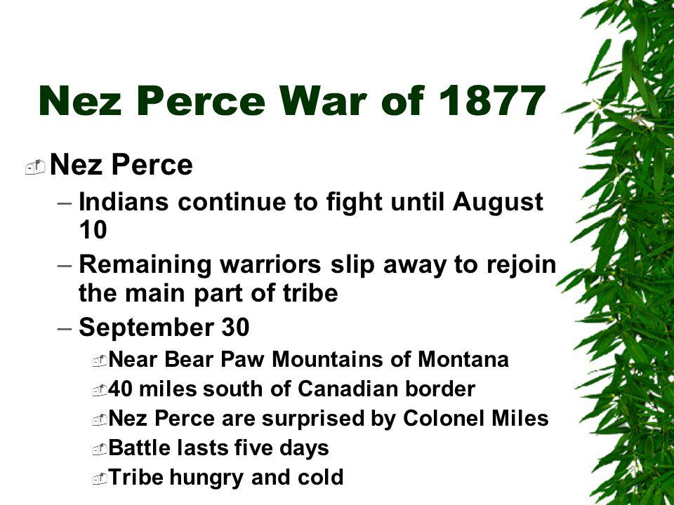 Nez Perce War of 1877 Nez Perce