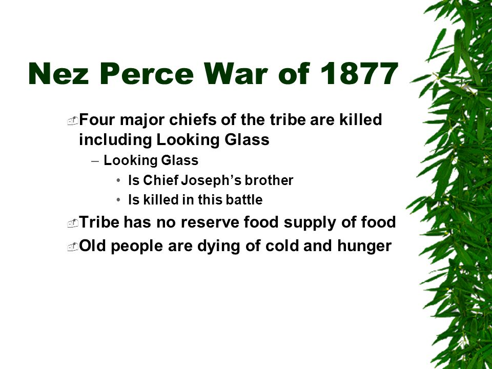 Nez Perce War of 1877 Four major chiefs of the tribe are killed including Looking Glass. Looking Glass.