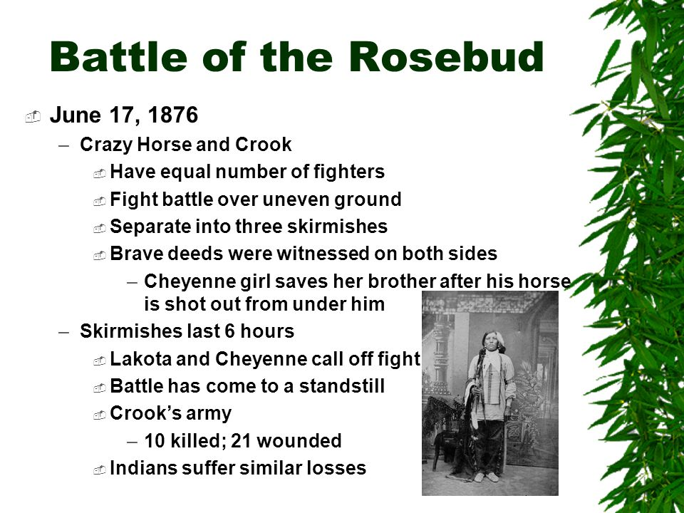Battle of the Rosebud June 17, 1876 Crazy Horse and Crook
