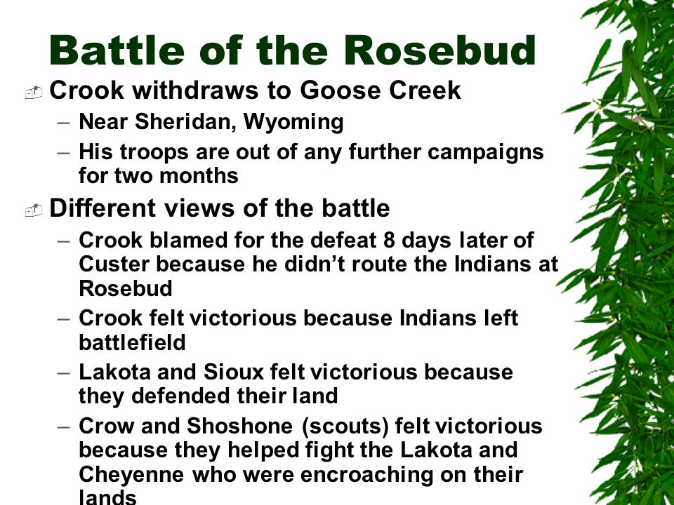 Battle of the Rosebud Crook withdraws to Goose Creek