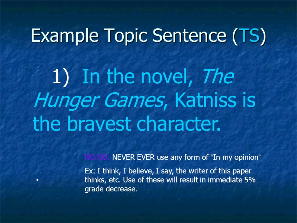 Example Topic Sentence (TS)