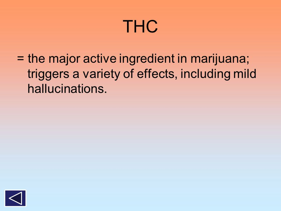 THC = the major active ingredient in marijuana; triggers a variety of effects, including mild hallucinations.