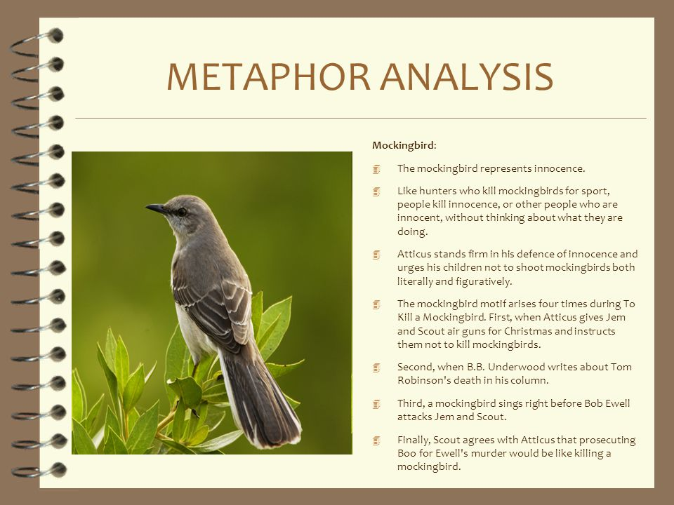 METAPHOR ANALYSIS Mockingbird: The mockingbird represents innocence.