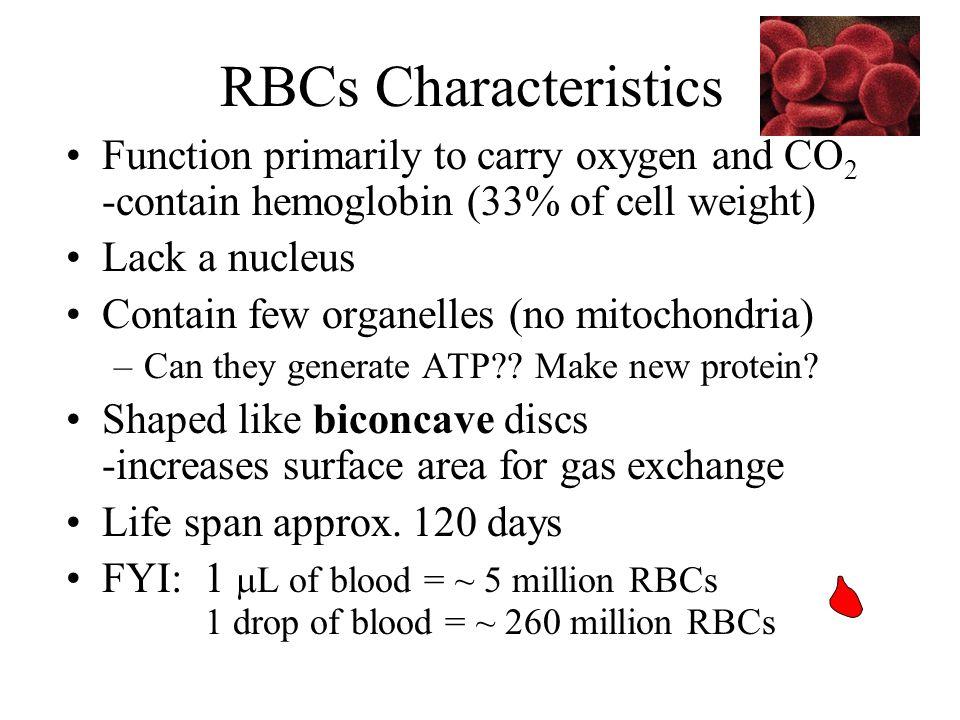 RBCs Characteristics Function primarily to carry oxygen and CO2 -contain hemoglobin (33% of cell weight)