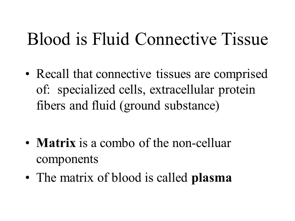 Blood is Fluid Connective Tissue