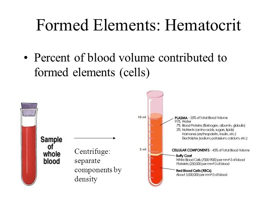 Formed Elements: Hematocrit