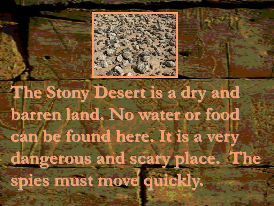 The Stony Desert is a dry and barren land