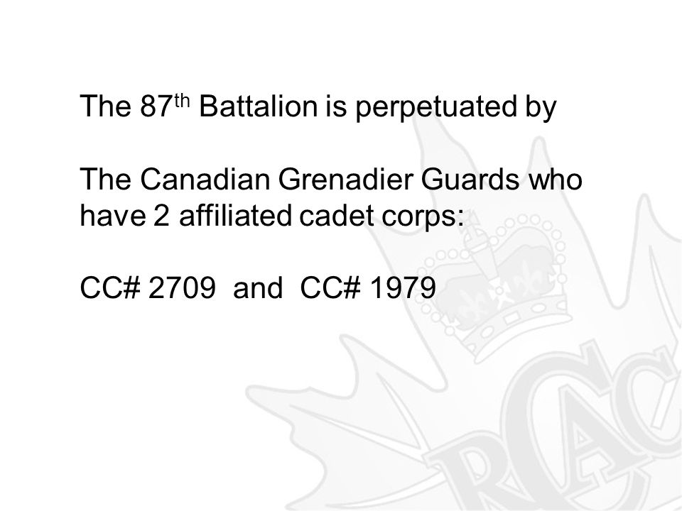 The 87th Battalion is perpetuated by