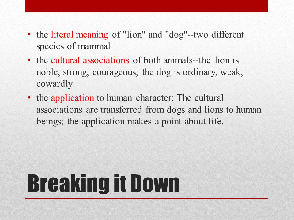 the literal meaning of lion and dog --two different species of mammal