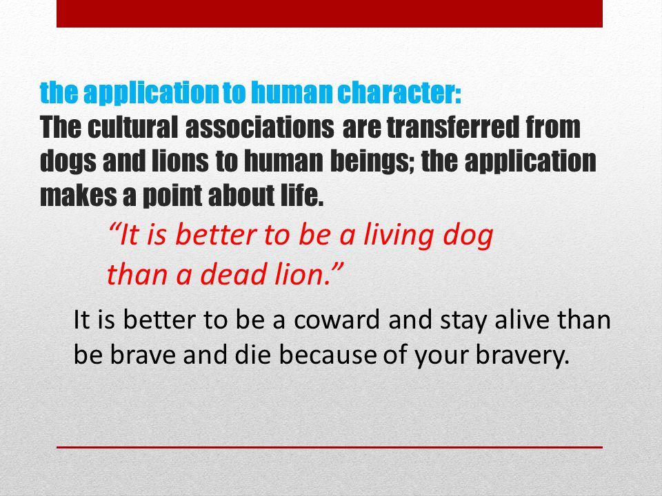 It is better to be a living dog than a dead lion.