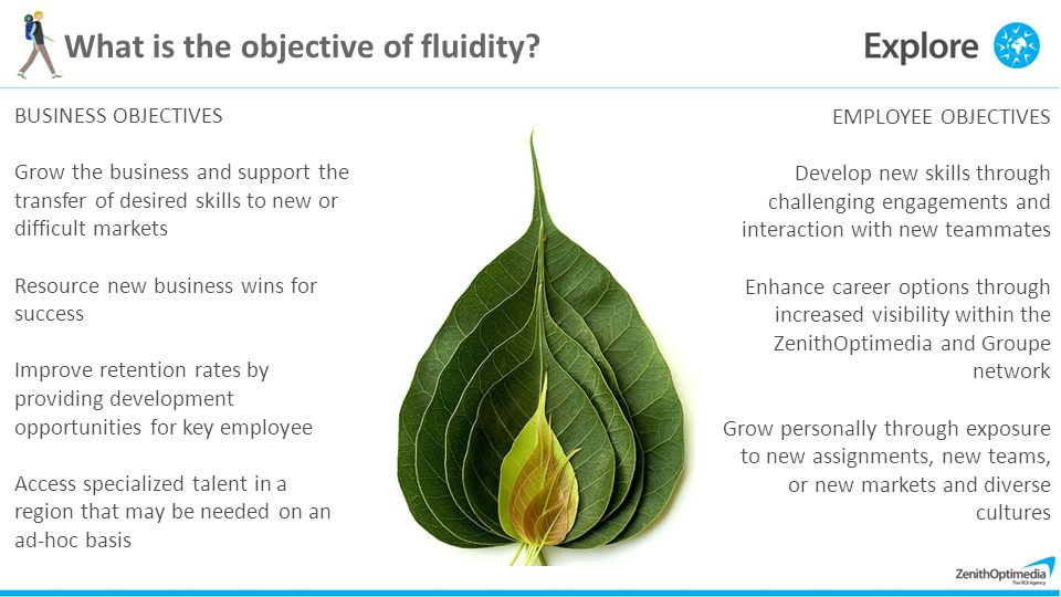 What is the objective of fluidity