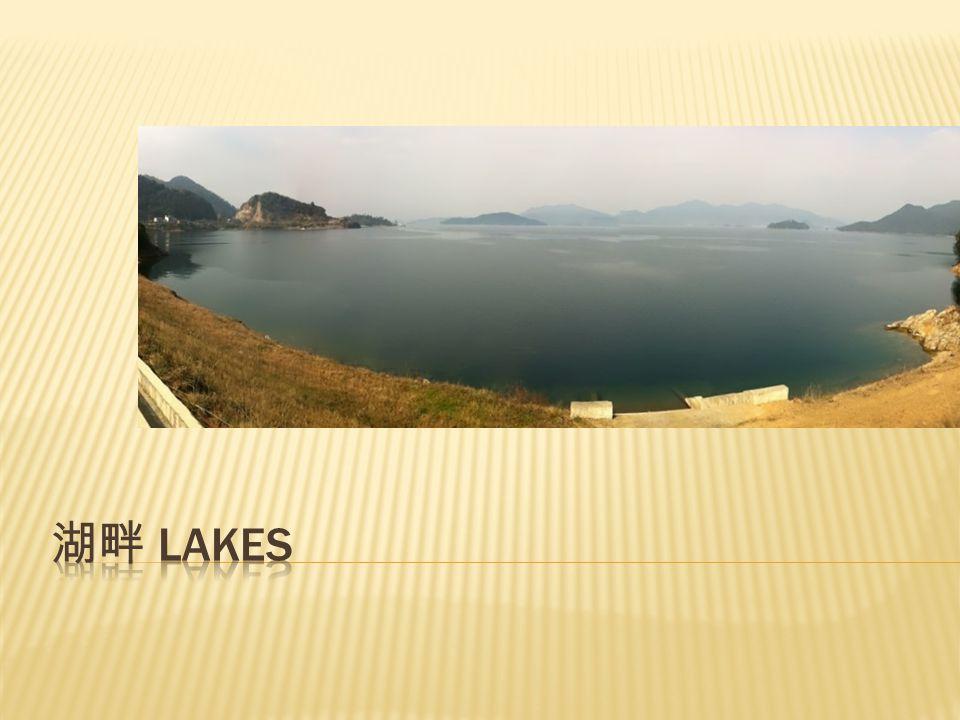 Winter CHIP 2012 湖畔 Lakes