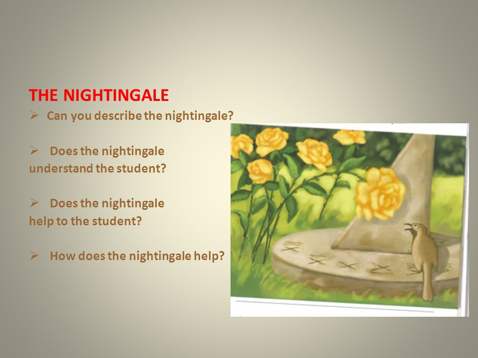 THE NIGHTINGALE Can you describe the nightingale Does the nightingale
