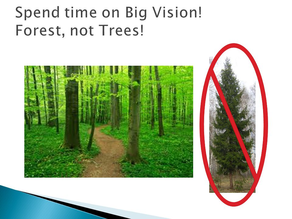 Spend time on Big Vision! Forest, not Trees!