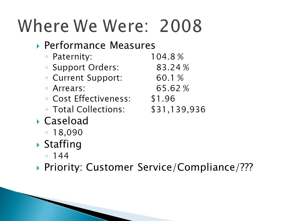 Where We Were: 2008 Performance Measures Caseload Staffing