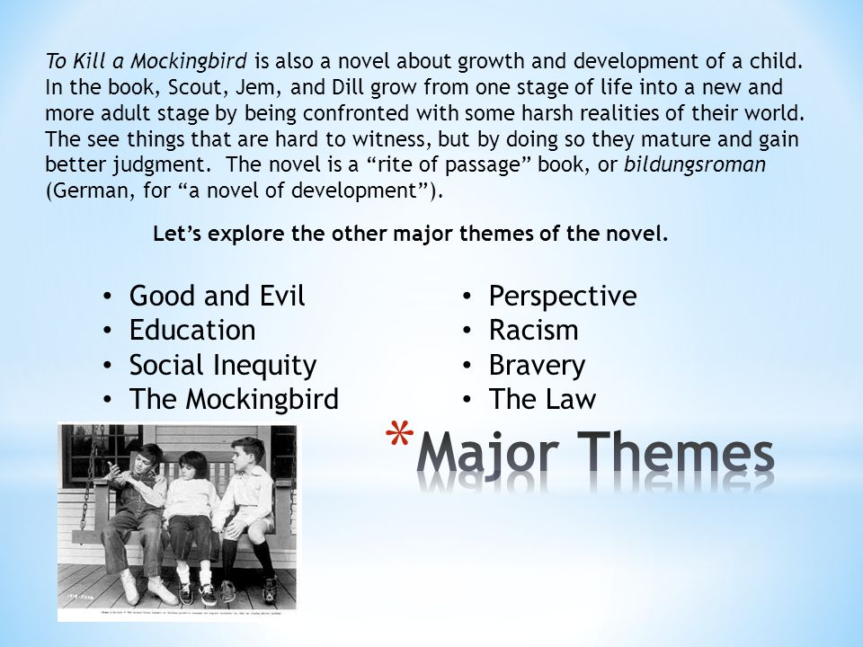 Major Themes Good and Evil Education Social Inequity The Mockingbird
