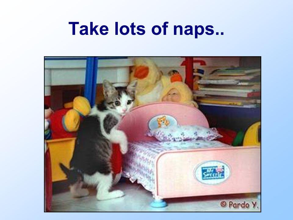 Take lots of naps..
