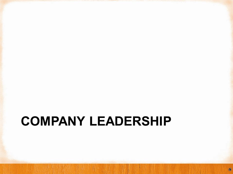 Company: Industry Leader