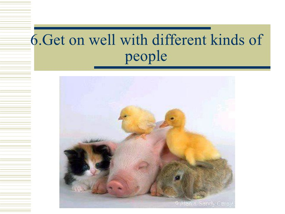 6.Get on well with different kinds of people