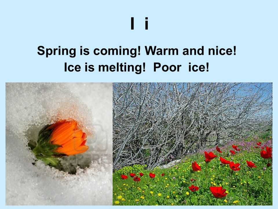 Spring is coming! Warm and nice!