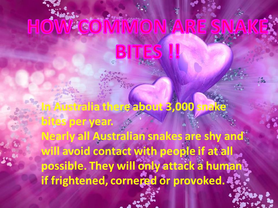 How common are snake bites !!