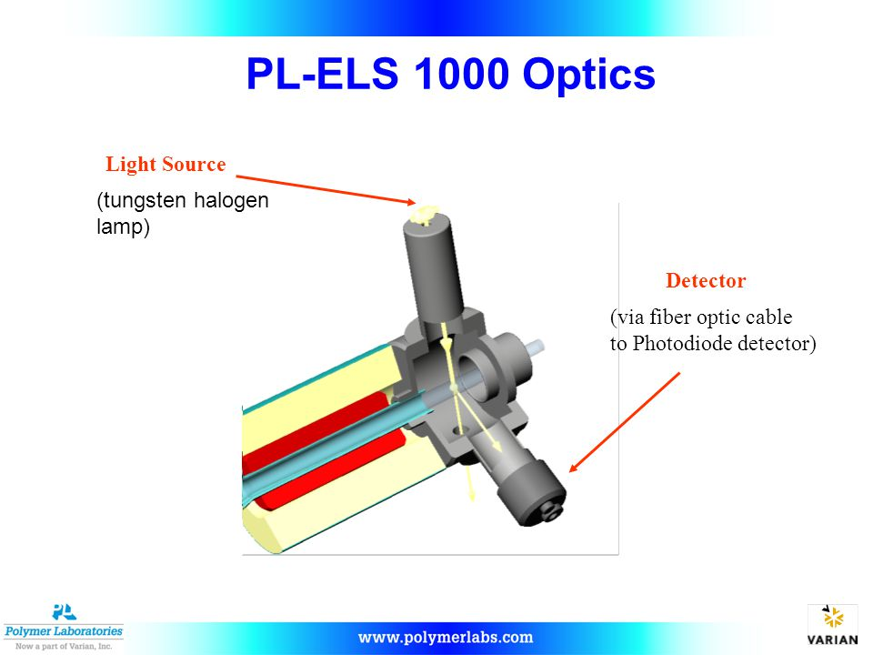 PL-ELS 1000 Optics Light Source (tungsten halogen lamp) Detector