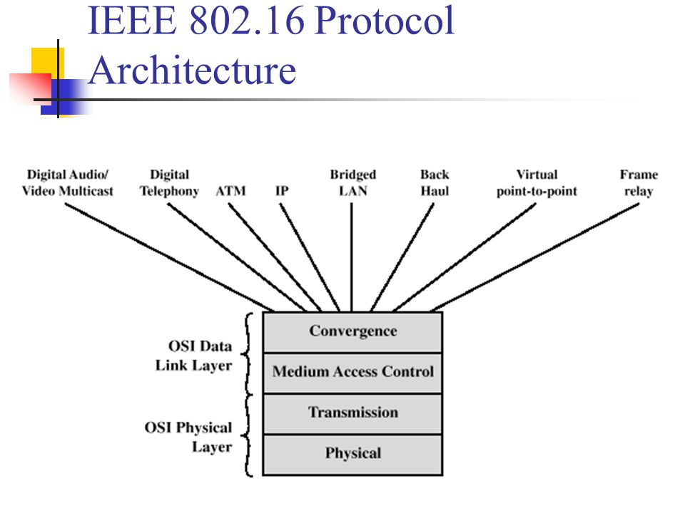IEEE 802.16 Protocol Architecture