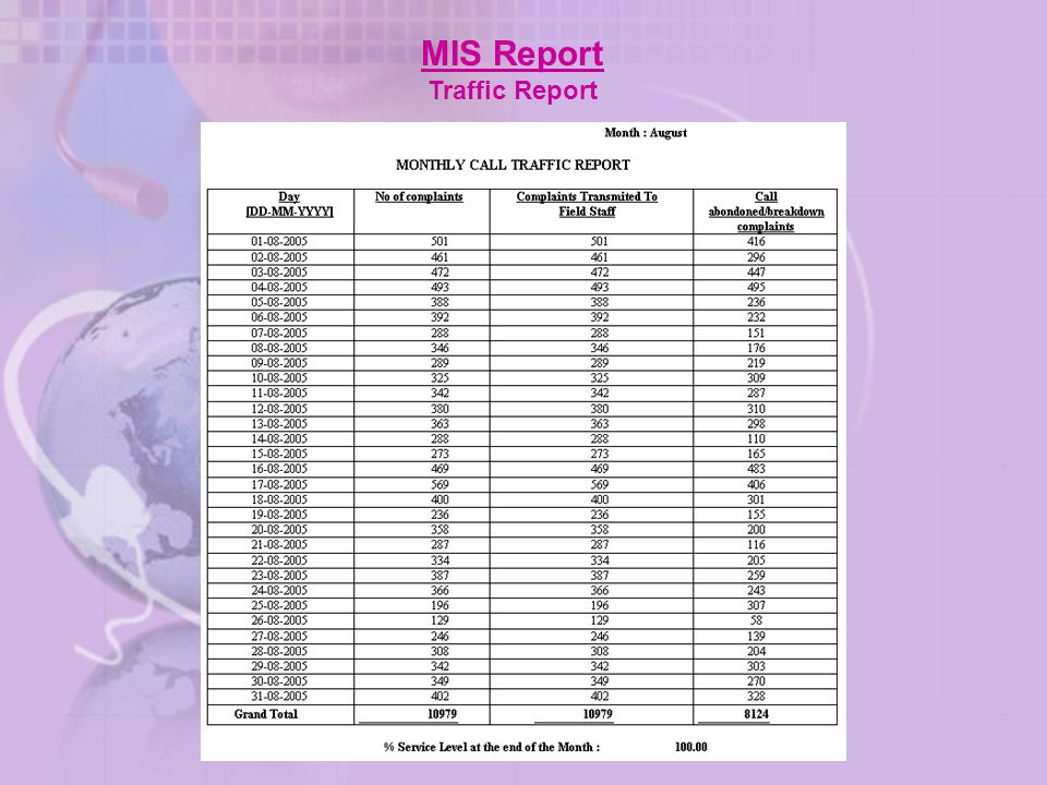 MIS Report Traffic Report