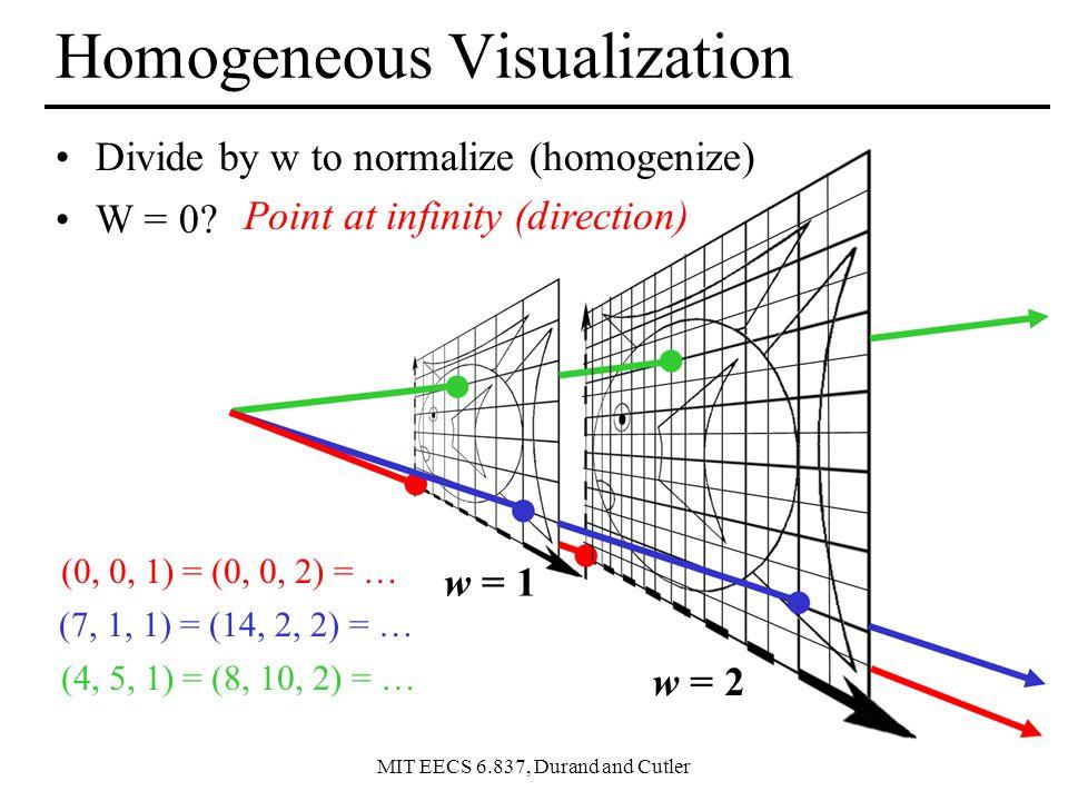 Homogeneous Visualization