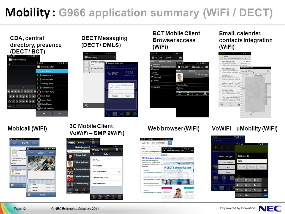 Mobility : G966 application summary (WiFi / DECT)