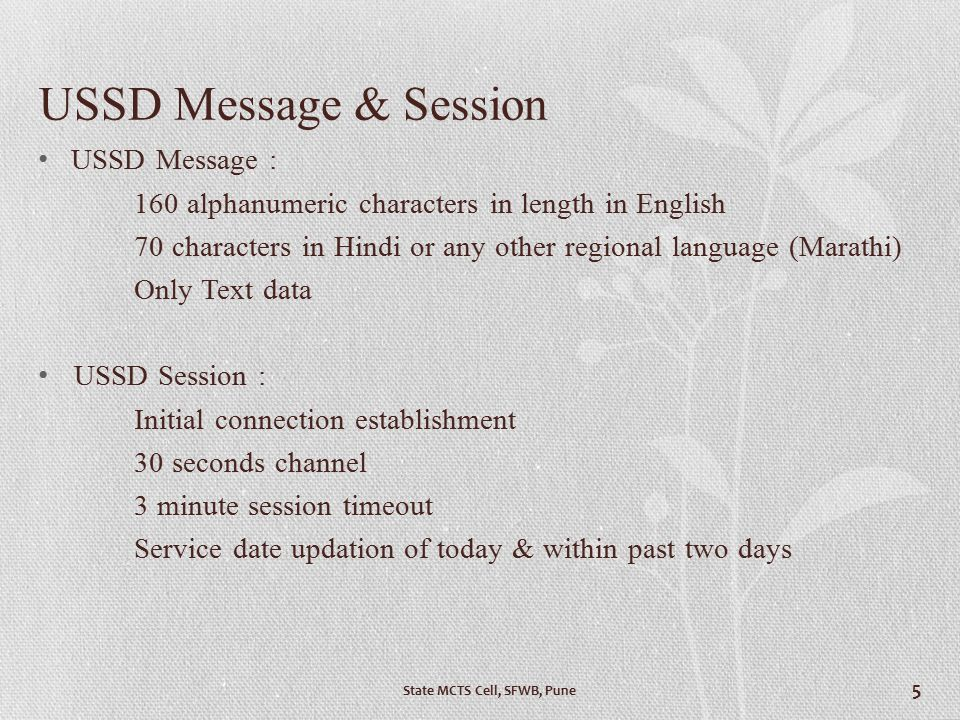 USSD Message & Session USSD Message :