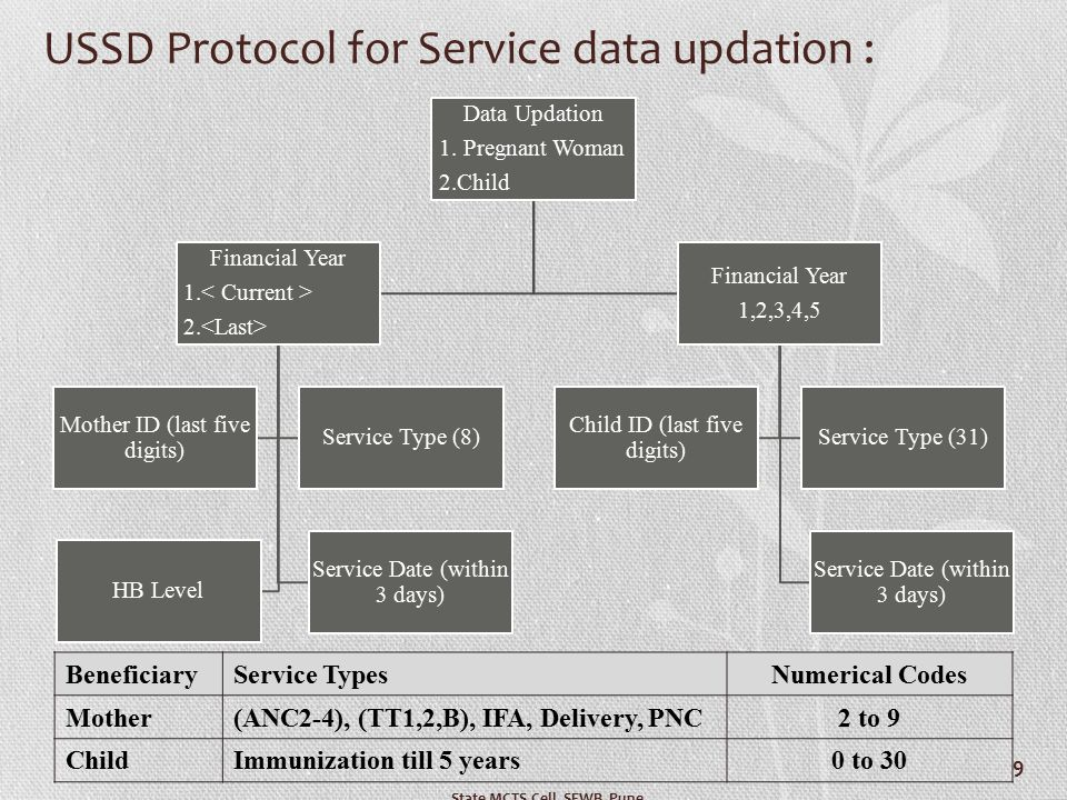 USSD Protocol for Service data updation :